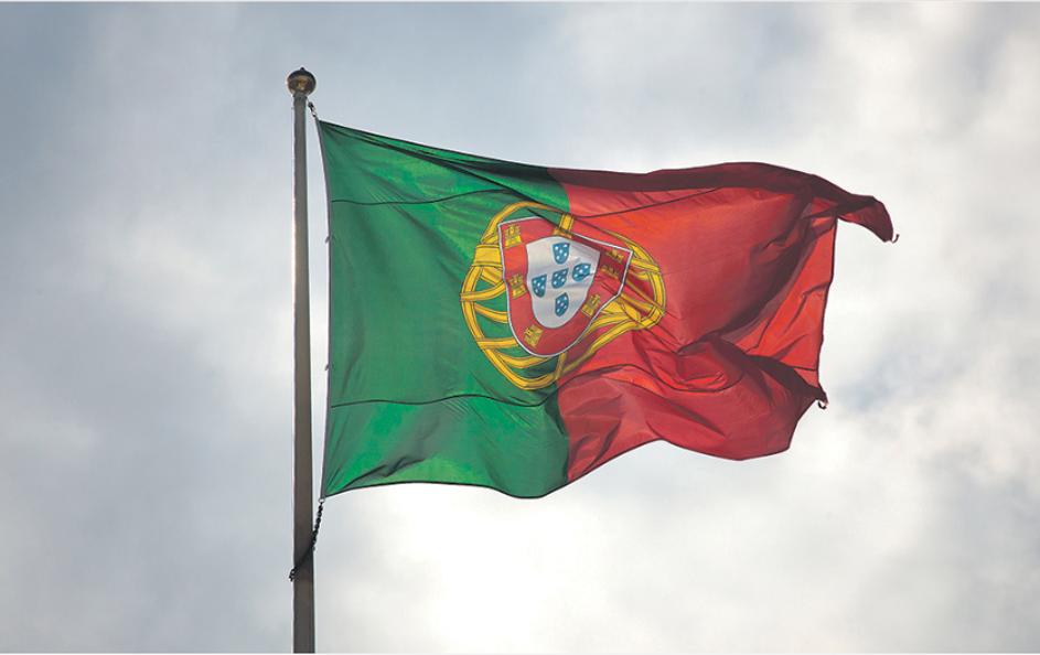 Imagem para OCDE: Portugal é o país com mais projetos inovadores para combater a Covid-19