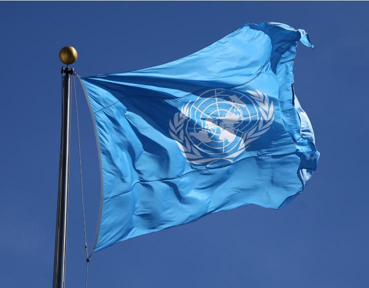 """Imagem para ONU aprova resolução para garantir """"acesso igual"""" a vacinas"""