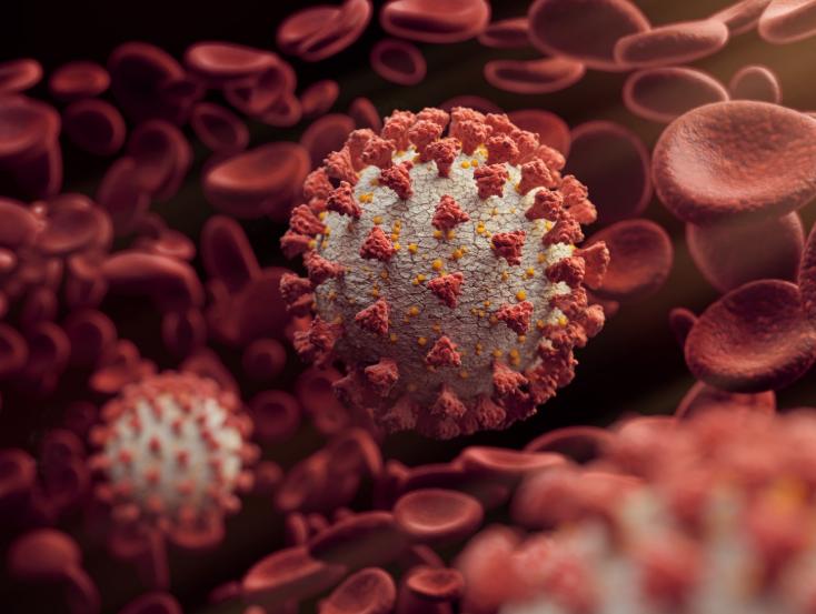 Imagem para Europa e Nova Iorque podem estar a braços com versão mais letal do coronavírus