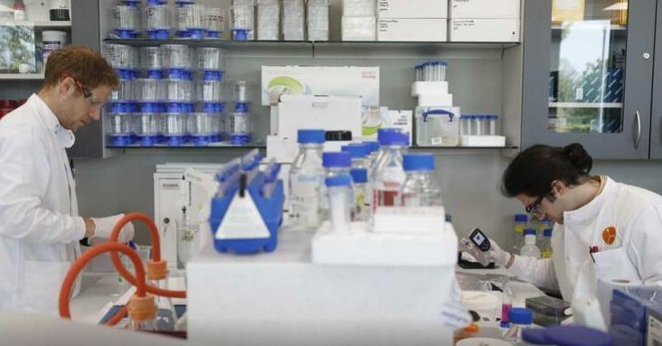 Imagem para Oxford acredita ter vacina para a Covid-19 em setembro
