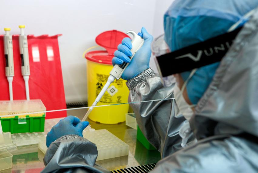 Imagem para Israel anuncia descoberta de anticorpo para o coronavírus